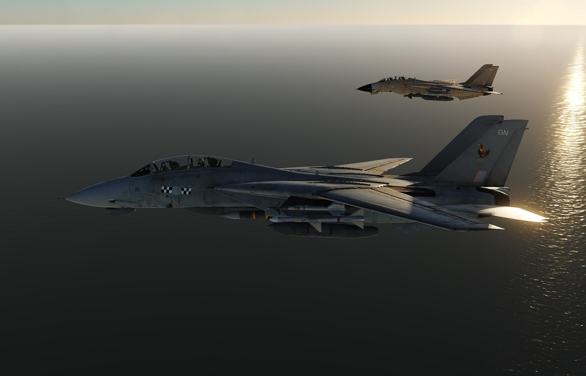 The RAF F-14 Tomcat Fighter Jets that Never Were