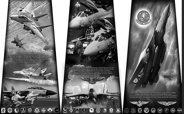 F-14 Tomcat monument unveiled at the National Naval Aviation Museum