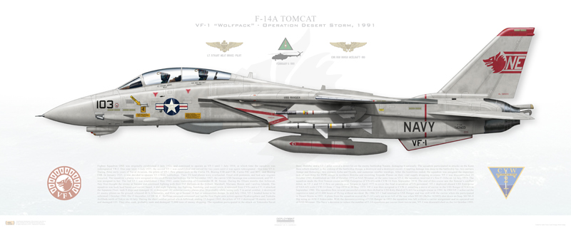 El Coyote: The Story of VF-1 Wolfpack's Desert Storm Kill