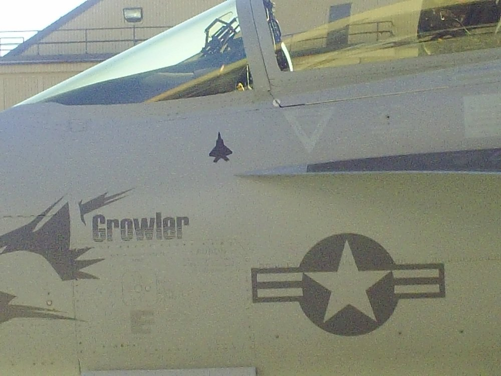 EA-18G with F-22 Kill Mark: what is the effectiveness of Growler's Jamming System against F-22 and F-35 Stealth Fighters?