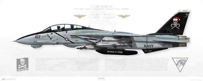 F-14B Santa Cat Print