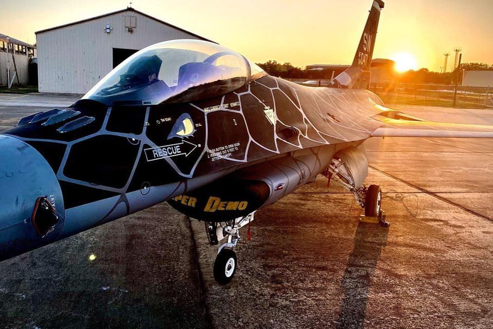 Meet Venom: F-16 Viper Demo Team's new cool Special Painted jet