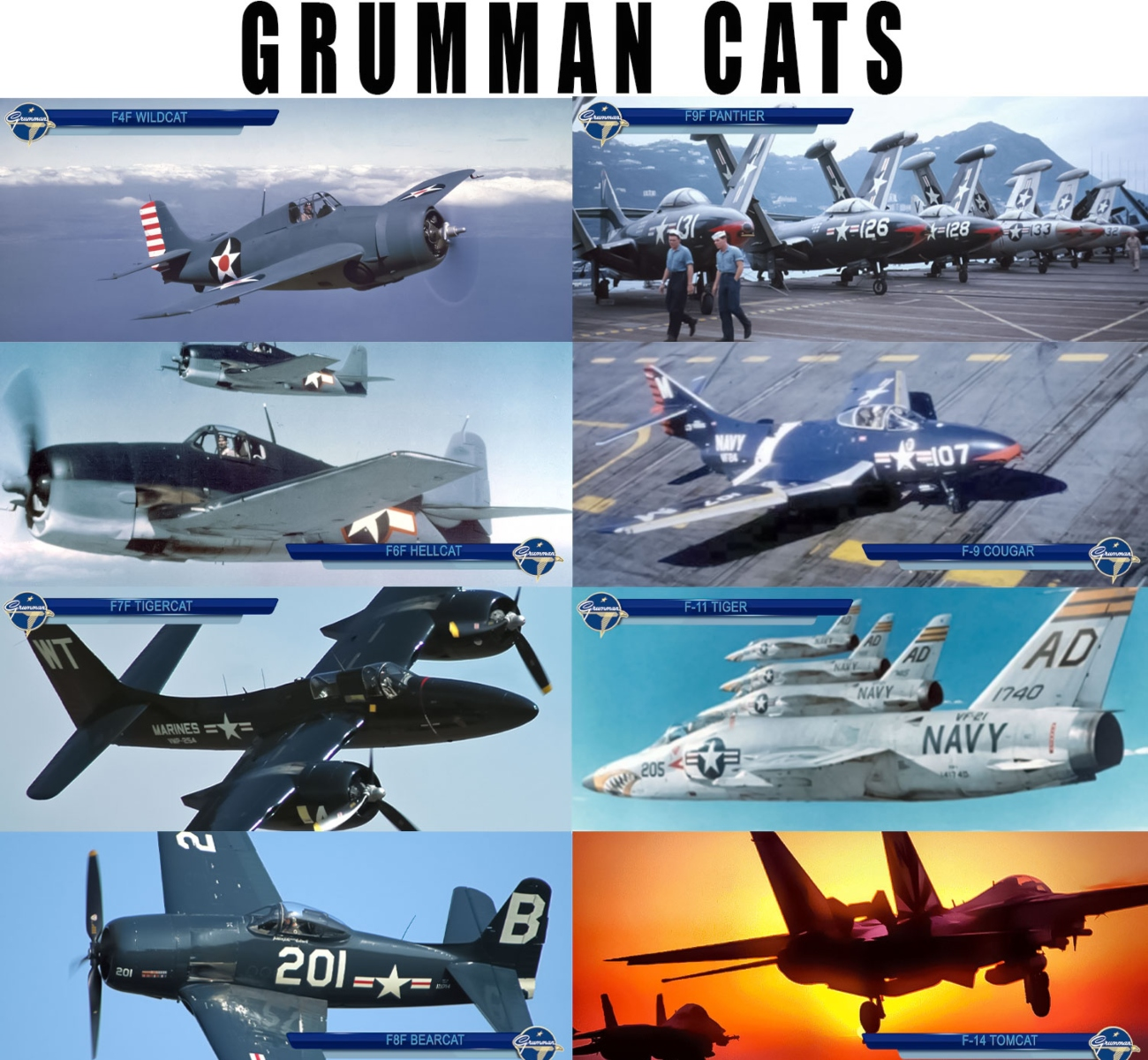 The Story of the Last Aviator to fly All the Grumman Cats